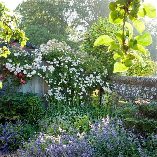 les plus beaux jardins du monde. Black Bedroom Furniture Sets. Home Design Ideas