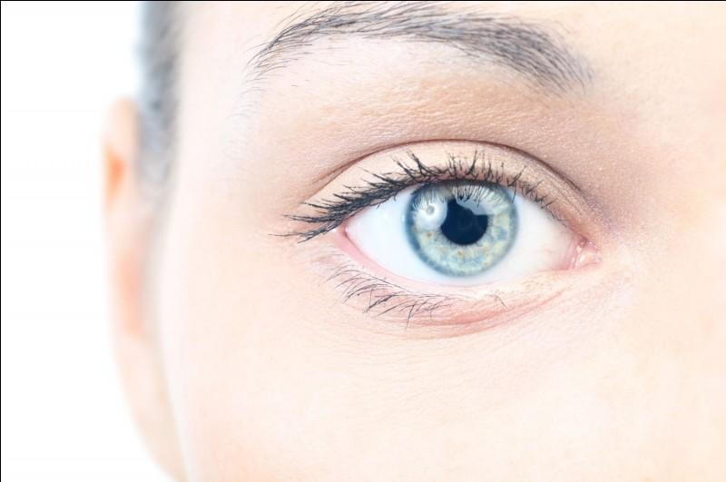 Tu préfères avoir les yeux :