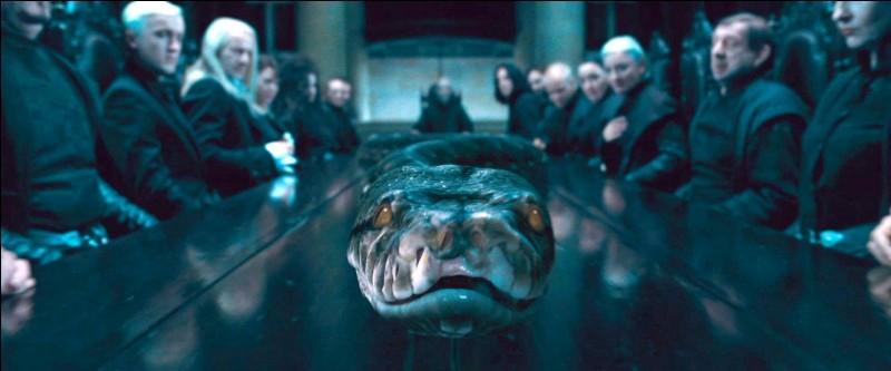 Qui Voldemort a-t-il tué pour créer cet Horcruxe (Nagini) ?