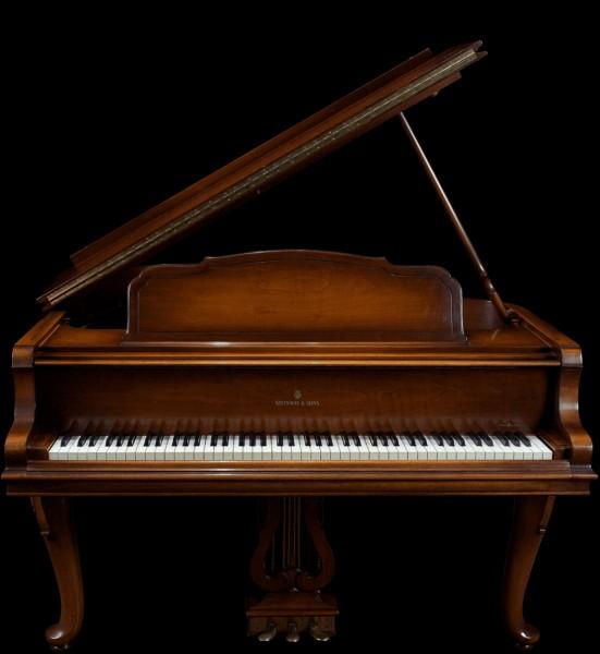 Le côté gauche de ce piano concerne les notes :