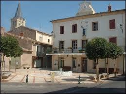 Commune de l'arrondissement de Béziers, Pinet se trouve dans le département ...