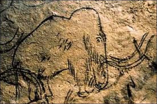 """Grotte longue de plus de 8 km, cette dernière est une des plus grandes cavernes ornées d'Europe. La visite se fait en train électrique sur une distance de 4 km aller-retour dans les galeries principales, où l'on peut, notamment, contempler la célèbre """"grotte des Cent Mammouths"""", ornée d'un remarquable ensemble de dessins au trait noir et de gravure. Quel est le nom de ce lieu, situé en Dordogne ?"""