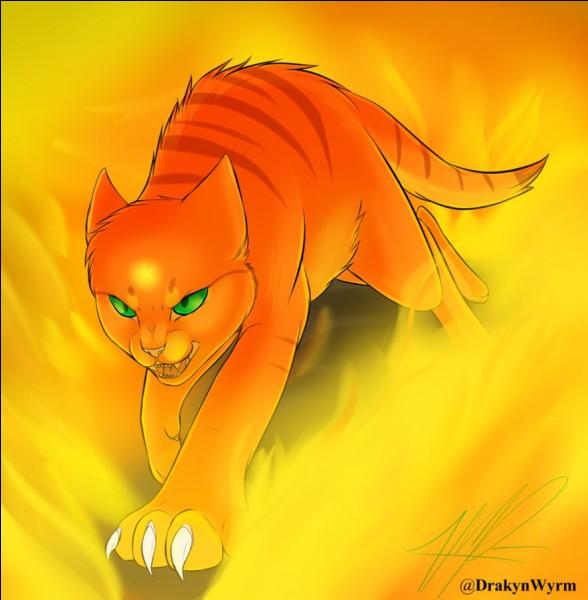 6 chattes en feu - 1 part 8