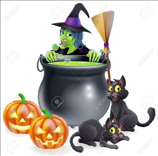 Sur cette image, tu peux voir deux chats noirs, deux citrouilles creusées, un chaudron, un balai et une...