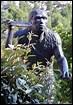 Où ont été découverts les restes de l'homme de Tautavel, qui vivait il y a 500 000 ans ? (c'était en 1971)