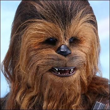 Comment Chuwbacca a-t-il pris la mort de Han Solo ?