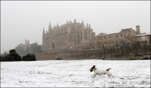 "Qui a écrit ""Un hiver à Majorque"", loin de sa célèbre mare ?"