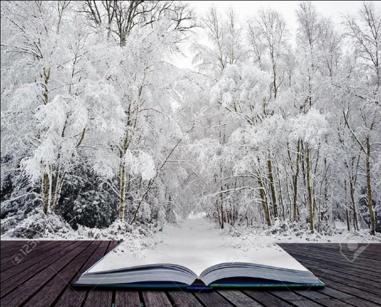 """Qui est l'auteur du roman """"Un singe en hiver"""" ?"""