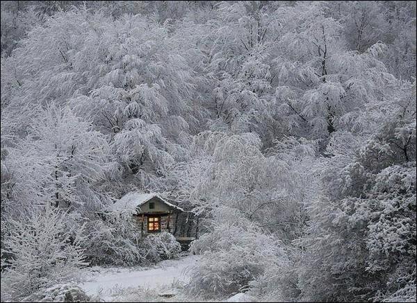 """Qui chantait """"Je n'aime pas l'hiver, il n'y a plus de feu, il n'y a plus rien à faire, qu'à jouer tous les deux, seuls. Attends, je sais des histoires..."""" ?"""