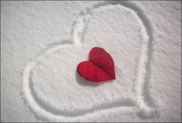 """Il a dit """"La haine, c'est l'hiver du coeur"""" dans son recueil """"Les contemplations"""" :"""