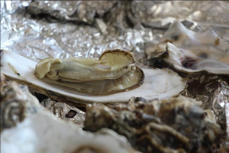 Les huîtres font partie des plats d'hiver, lesquelles choisirez-vous si vous préférez les petites ?