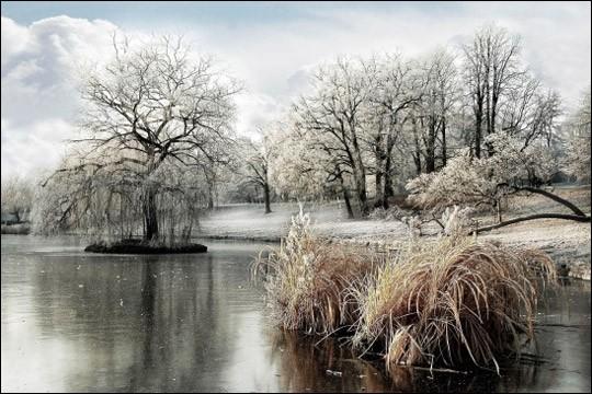 """Quel est ce poète qui a écrit """"Que j'aime le premier frisson de l'hiver"""", et qui partageait peut-être, au coin du feu, les longues soirées d'hiver avec sa maîtresse George Sand ?"""