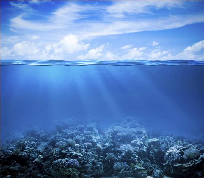 Quel océan ou quelle mer ne borde pas la France métropolitaine ?