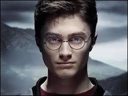 Quel est le métier de Harry Potter ?