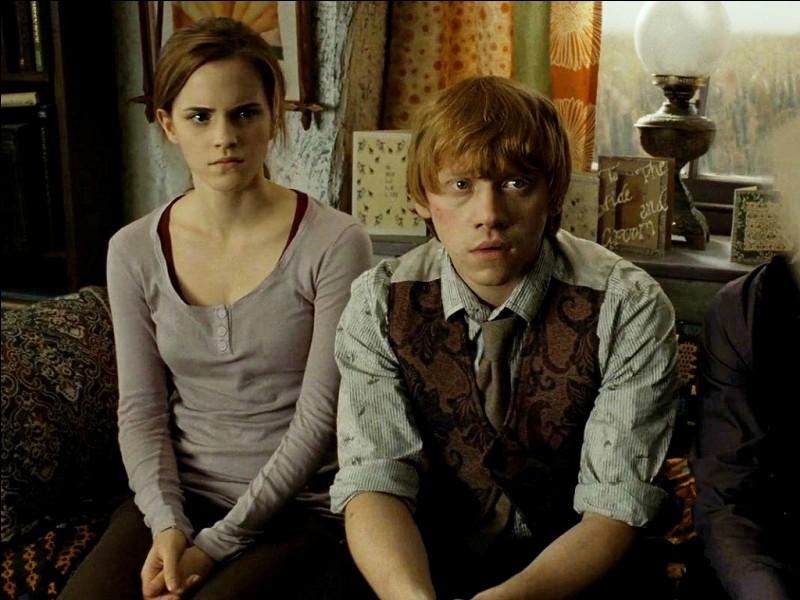 Pour cette question vous savez que Hermione et Ron se sont mariés. Mais combien d'enfants ont-ils eus ?