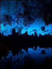 Qu'est-ce que le bleu d'Auvergne ?