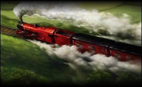 Dans le Poudlard Express, retour chez toi. Que fais-tu?