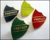 Tu a été nommé(e) préfet(préfète). Quelle est ta réaction ?