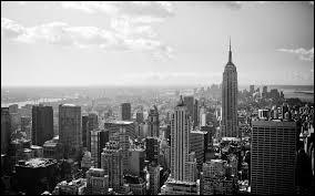"""Qui a chanté """"Englishman in New York"""" dans les années 80 ?"""