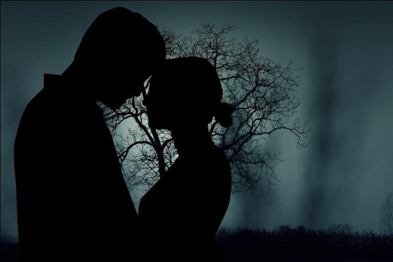 """Qui chantait """"Retiens la nuit, pour nous deux jusqu'à la fin du monde"""" ?"""