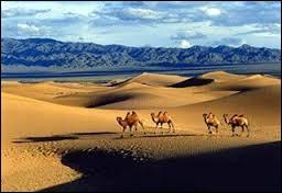 Lequel de ces déserts trouve-t-on en partie en Chine et en partie en Mongolie ?