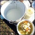 Essentiellement fabriqué en Mongolie, ce yaourt est élaboré à partir du lait de la femelle ----.