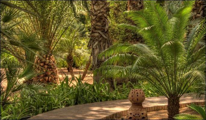 Comment était le jardin dans le titre d'un roman de Cronin ?