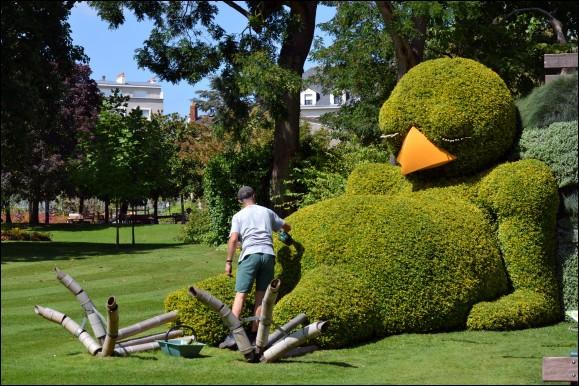 Si vous avez beaucoup d'erreurs sur ce quiz, rassurez-vous, car comme disait le jardinier....