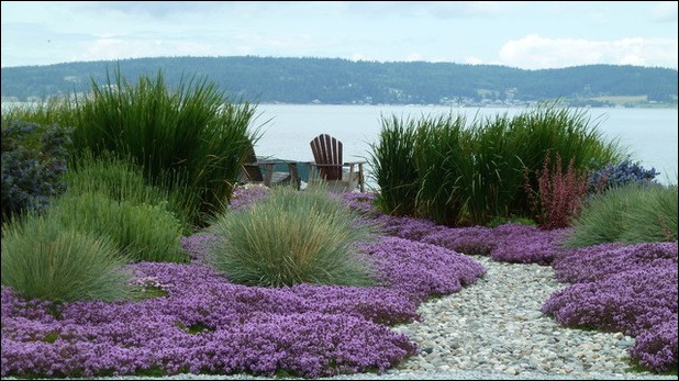 Pour Anne Vanderlove, quel temps fait-il sur le jardin, sur le rivage, dans sa ballade en novembre ?