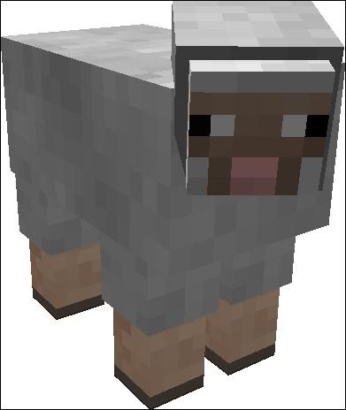 Comment faut-il renommer un mouton pour qu'il soit multicolore ?