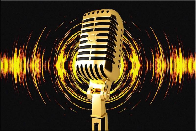 Quel chanteur préfères-tu ?