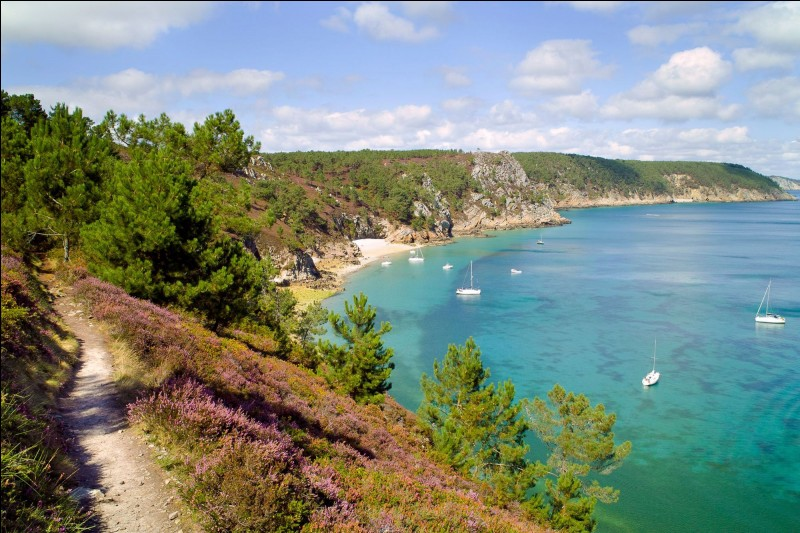 Réunion ou Bretagne, choisissez