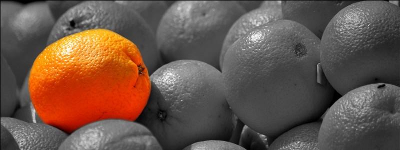 Quelle partie de l'orange est indispensable à la réalisation du vin d'orange ?