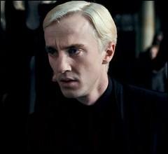 Quand les Mangemorts capturèrent Harry, Ron et Hermione, ils les amenèrent au Manoir Malfoy et que demandèrent-ils à Draco ?