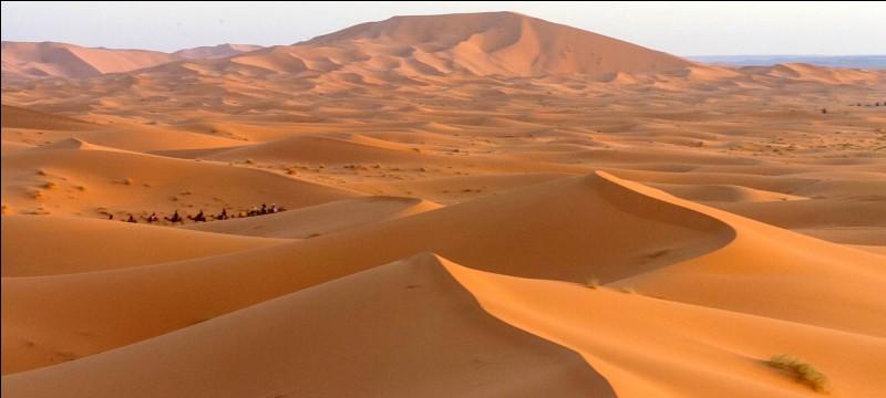 J'ai deux bosses et vit généralement dans le désert.