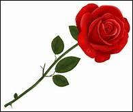 """Laquelle de ces propositions désigne un synonyme de """"bouton"""" pour une fleur (une rose par exemple)?"""