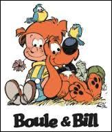 En quelle année a été créée la première BD de Boule et Bill ?