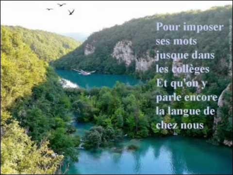 """A quel chanteur doit-on le titre """"La langue de chez nous"""", en 1985 ?"""