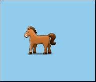 🐎Cet animal, 12e signe de l'horoscope chinois pousse un braiement quand il crie.