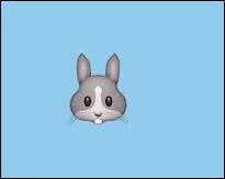 🐇Cet animal, si mignon, pourrait-il être bélier ?