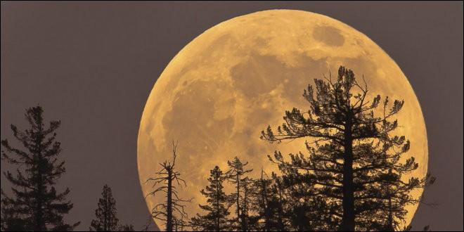 Fin d'année 2016, quelle soirée avons-nous pu observer une Super Lune ?