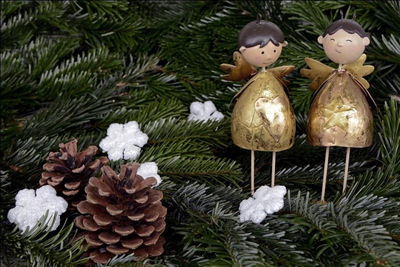 Quel arbre décore-t-on généralement pour célébrer Noël ?