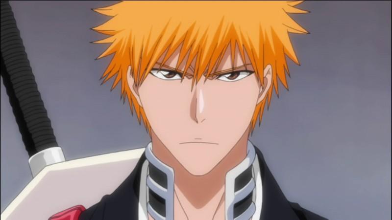 Quel est le nom de famille d'Ichigo dans Bleach ?