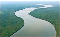 Que désignent les bouches d'un cours d'eau ?