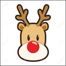 Deux d'entre eux ont un nez lumineux. Ils sont placés à l'avant et permettent au père Noël de se repérer dans les tempêtes.