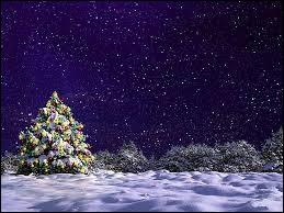 Noël est une fête d'origine romaine.