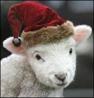A l'époque, le traîneau du père Noël était tiré par des agneaux.