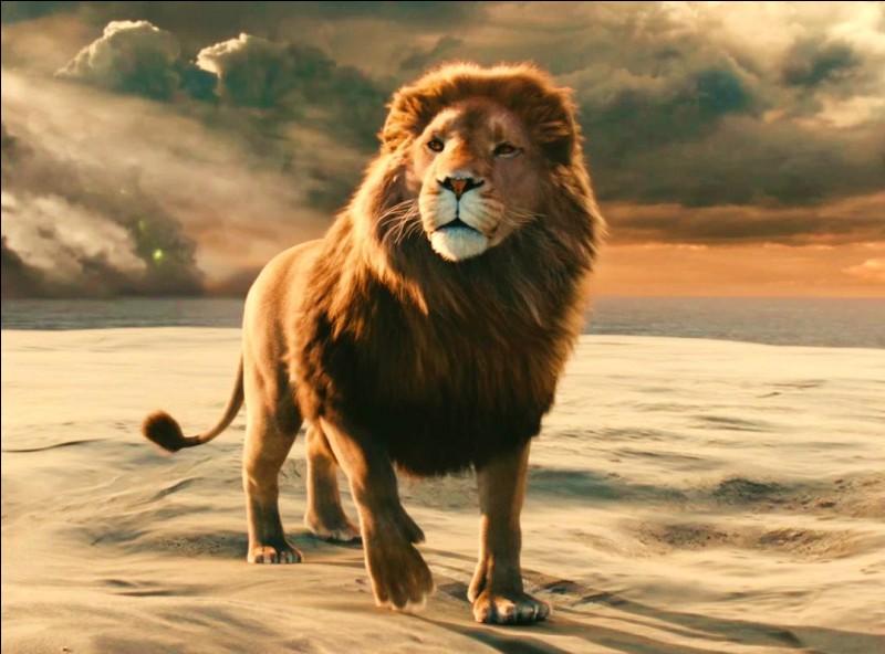 """Sous quel nom ce magnifique lion présent dans le film """"Le Monde de Narnia"""", où il est le personnage central, est-il connu ?"""