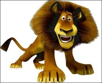 """On retrouve ce lion dans les films """"Madagascar"""" où il vit de folles aventures avec ses trois amis : Marty un zèbre, Melman une girafe et Gloria une femelle hippopotame. L'avez-vous reconnu ?"""