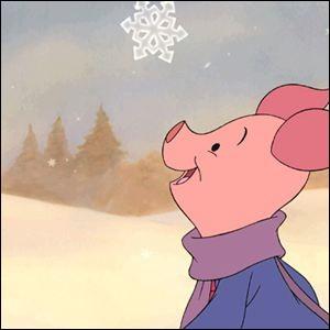 Où a-t-on des chances de voir ce cochon ?